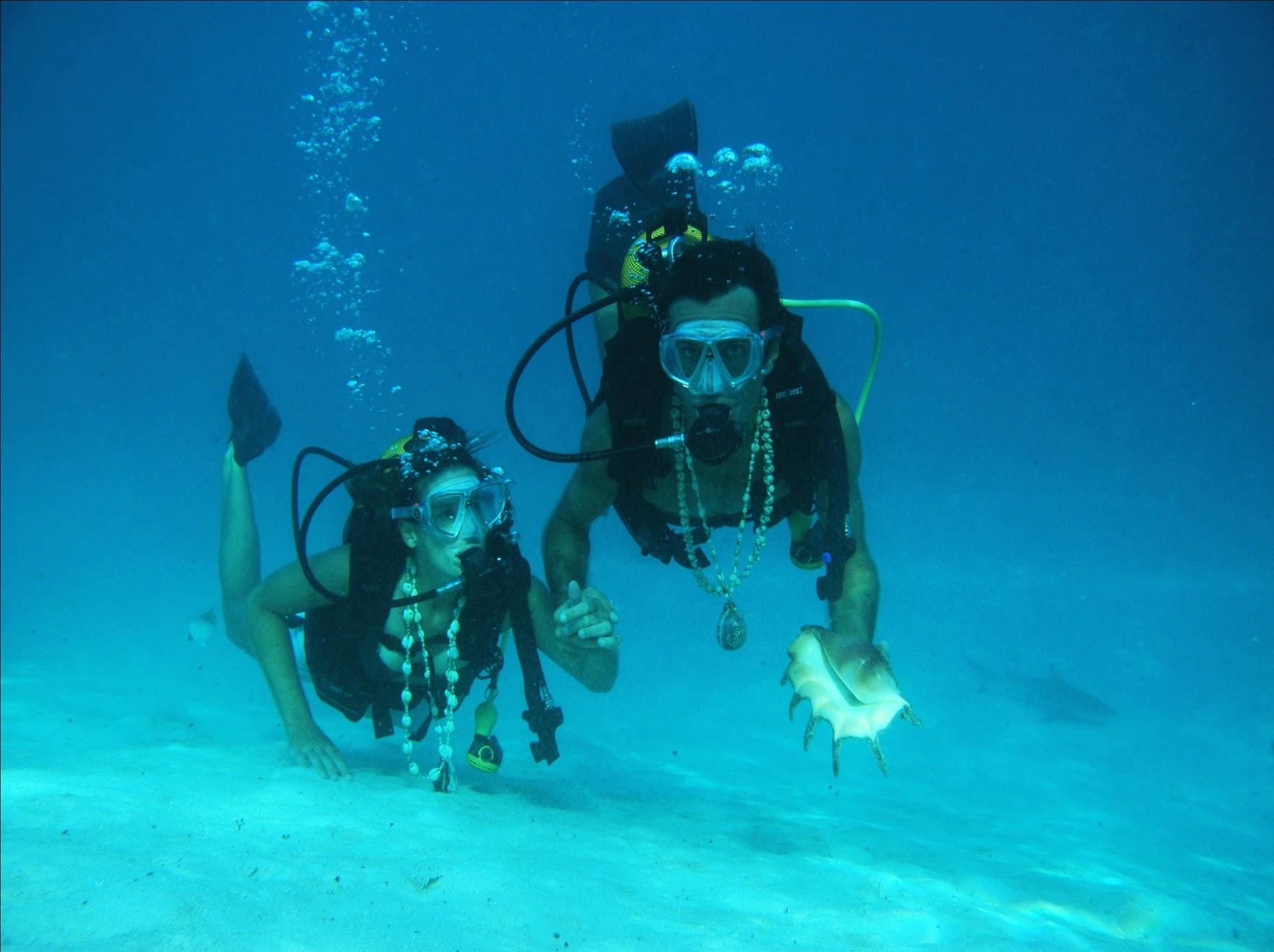 Plongée Honeymoon avec Topdive