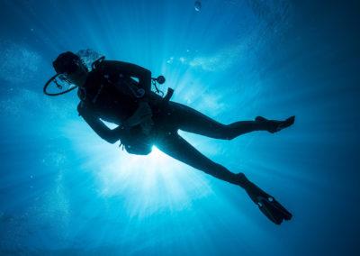 Découverte des fonds marins en Polynésie avec Topdive