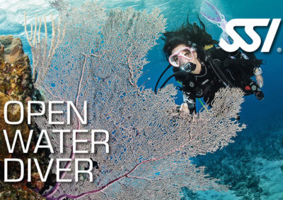 Formation Topdive - Open Water Diver
