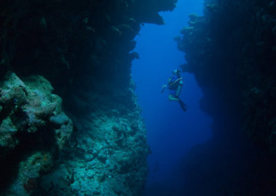 Faille de Arue, Tahiti -Plongée avec Topdive. Copyright Sylvain Girardot