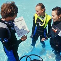 Baptême de plongée en Polynésie